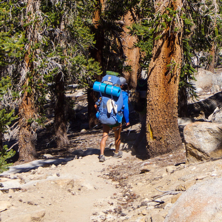 pacific crest trail facts