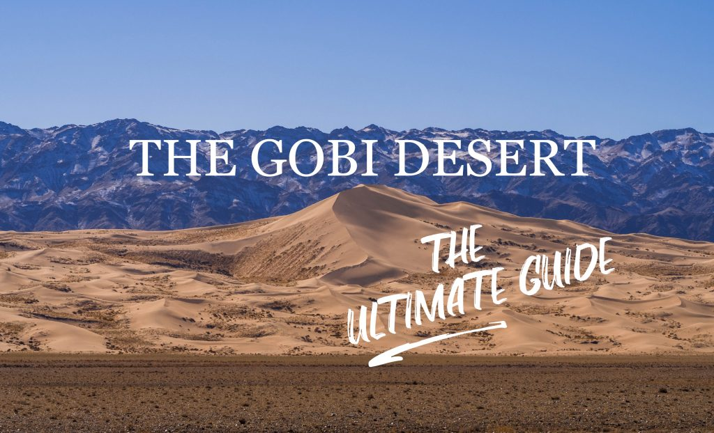 gobi desert tour mongolia