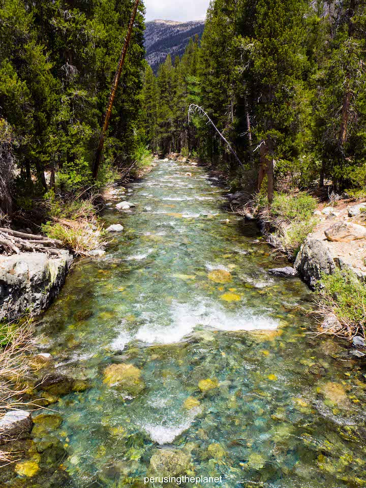 straight, clear mountain river on the pacific crest trail