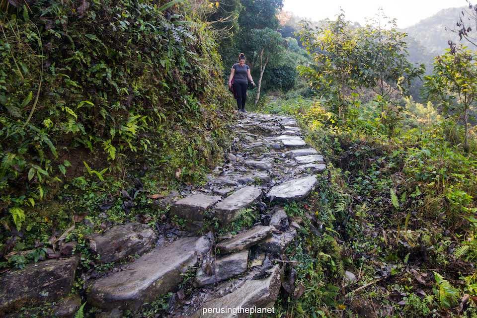 wet steps on the walk to pokhara peace pagoda