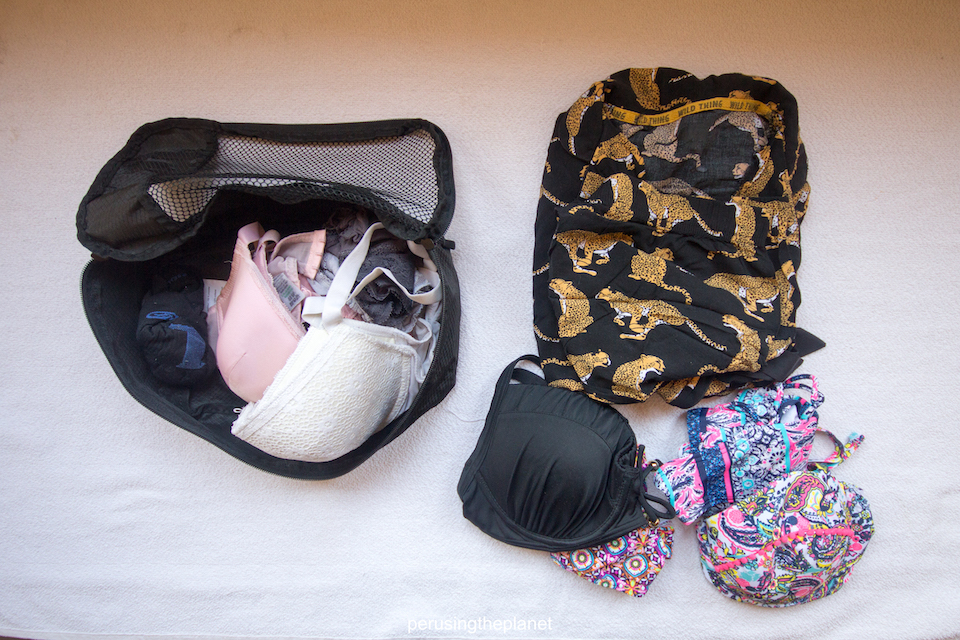backpack luggage