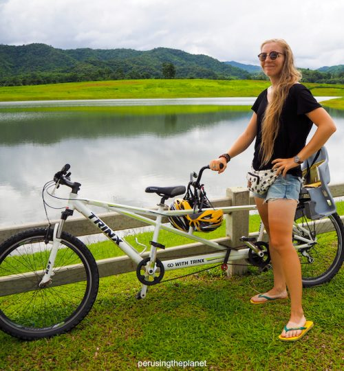 tandem bicycle in thailand singha park chiang rai