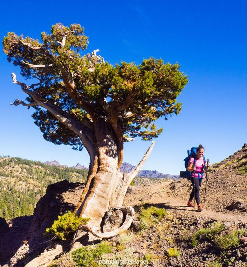 pacific crest trail hike dangers